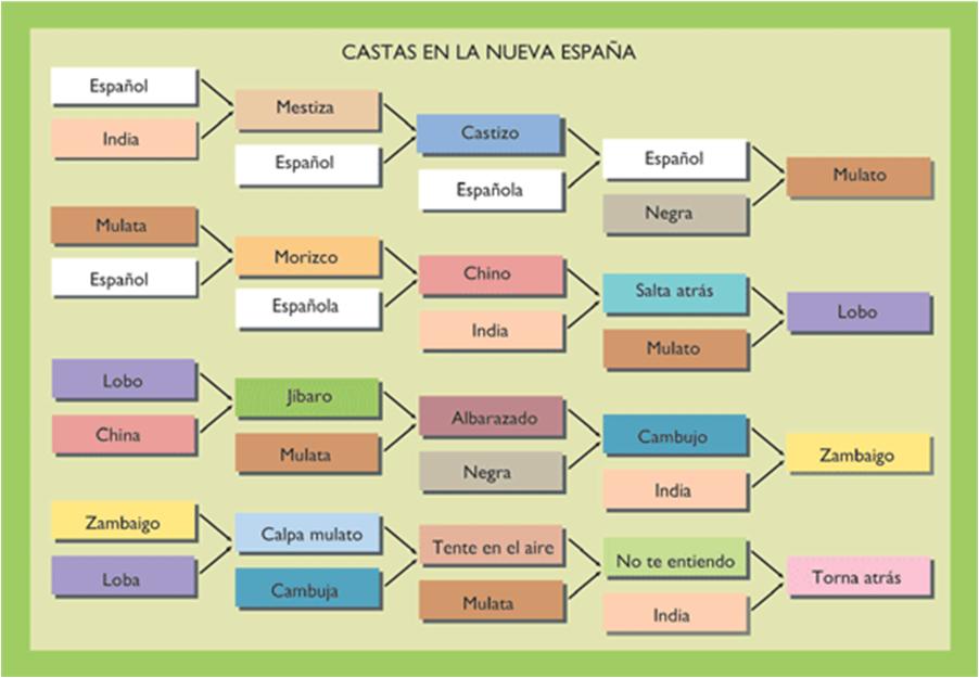 Las Castas En La Nueva Espa  A
