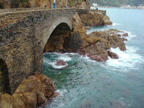 الجزائر pb.jpg