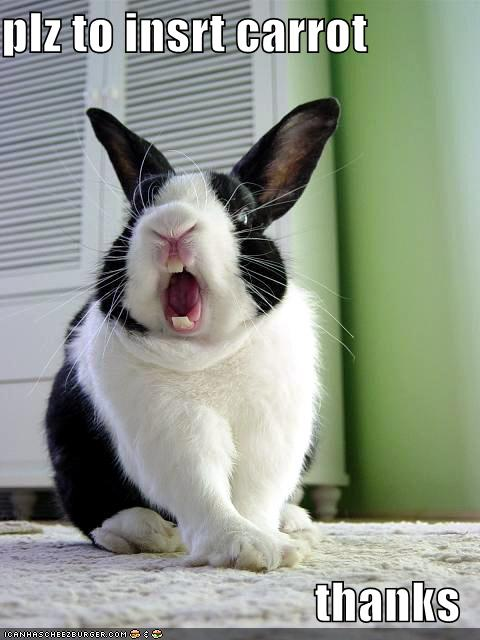 rabbit with be mouth