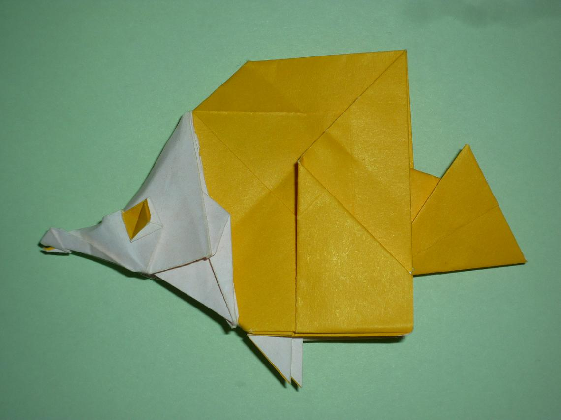 Butterfly Fish De Red And White Paper