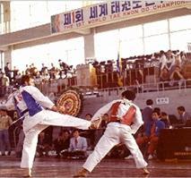Fred Abster Taekwondo