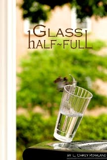 Glass half-Full and Glass Chimera