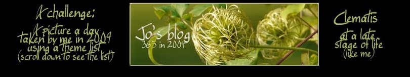 jo's blog