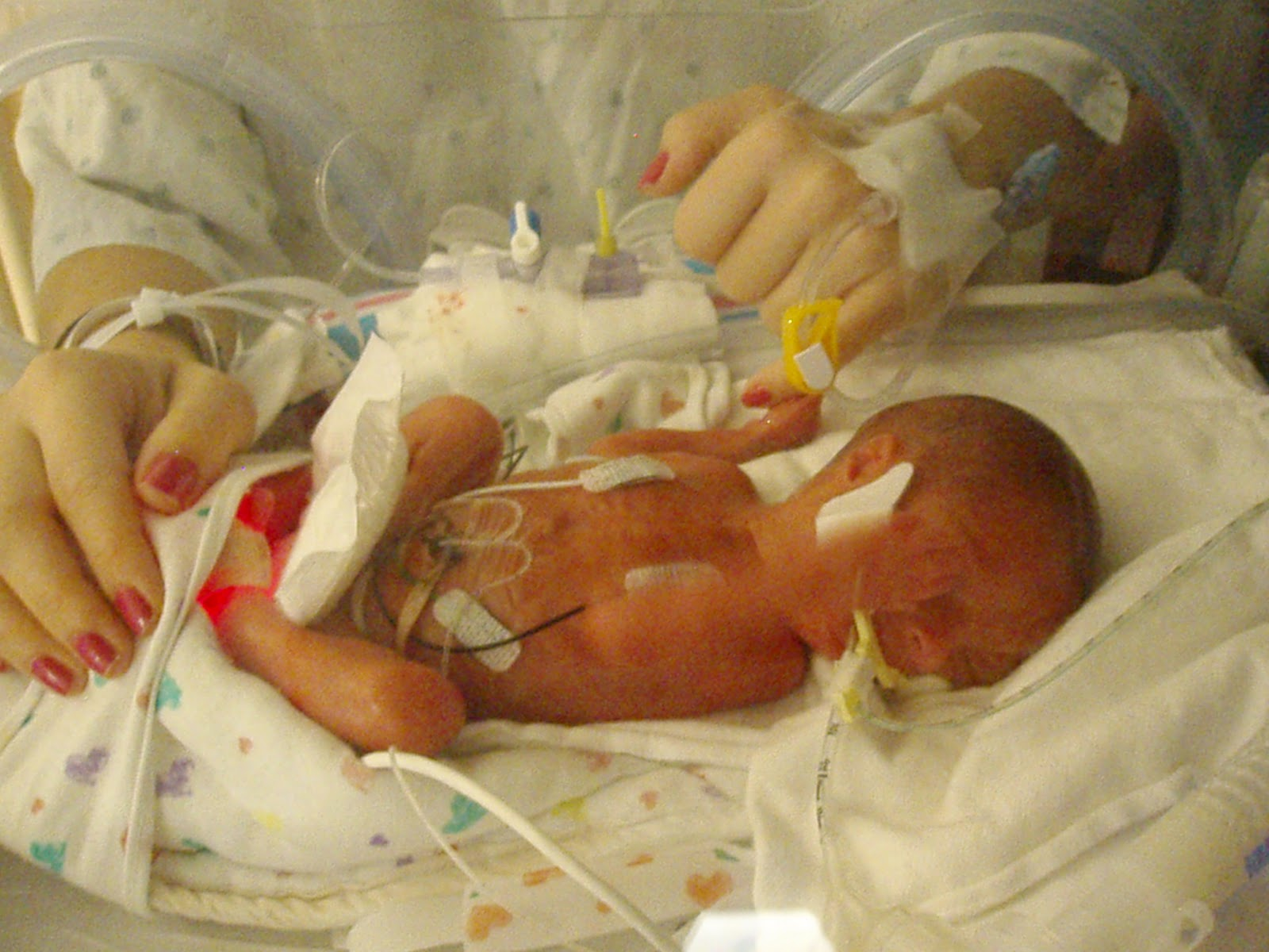 Search results for baby born at 26 weeks calendar 2015