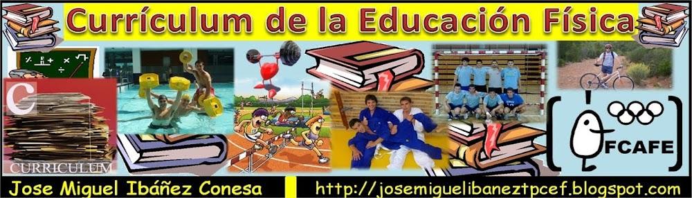 Curriculum Fcafe Jose Miguel Ibáñez Conesa