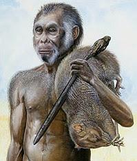 Homo floresiensis, Hobbit