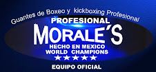 MORALES PROFESIONAL