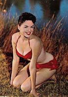 60er 63er Bikini