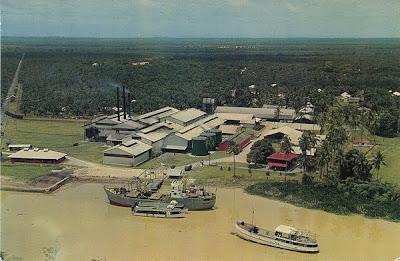 Palm Oil Factory of Ulu Bernam Estate in Malaysia