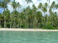 Au Motu Mahere Coconut Grove