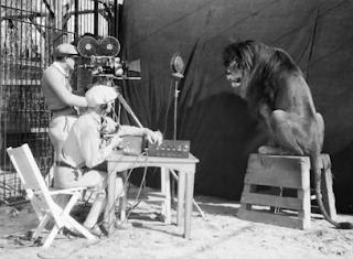 León MGM