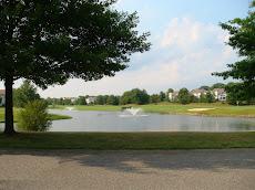 Concordia Ponds