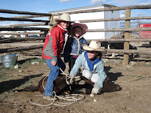 Cowboy Education