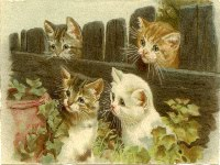 My Gifts to You - Vintage Postcards