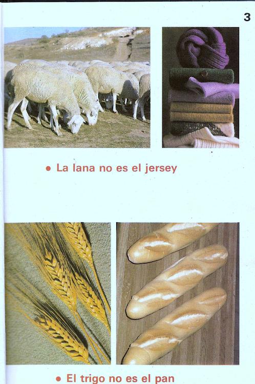 La lana no es el  Jersy....