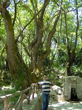 Αθανάσιος Διάκος Φωκίδος