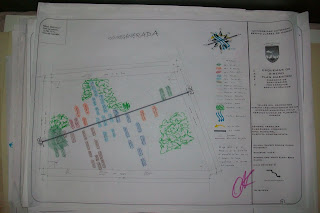 U a b j o facultad de arquitectura 5 de mayo fase 3 for Arquitectura 5 de mayo plan de estudios