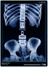 """Un click puede cambiar tu futuro, ponete el cinturon de seguridad"""""""