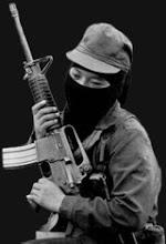 insurgenta
