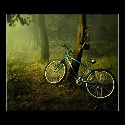 Pakar syor baiki basikal kekal muda