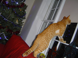 where's santa?  i want a present!