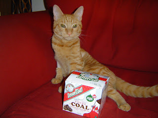 coal for christmas!! but he hasn't been *that* naughty... he only ate that one little christmas light... just the one!