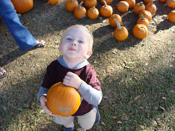 Picking out his pumpkin from a pumpkin patch