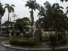 Plaza Indio Guacamaya A. COLINA 1942