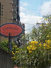 GALLERY RESTAURANT -GALERIA RESTAURANTE:GAMELA/TERESÓPOLIS/RJ,Comida mineira.