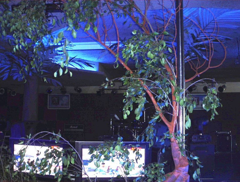 Visual Merchandising, Interior and Exterior Decoration: Jungle Party on