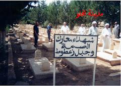 مقبرة الشهداء بأفلو  لاأجد لها عنوانا مناسبا /الشهداء يجتمعون في مدينة أفلو وهذا ليس من باب الصدفة