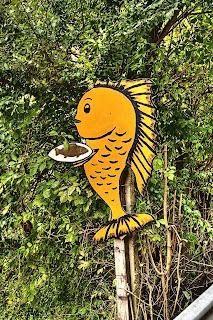 aranypisztráng pisztráng hal tábla lillafüred lillafüredi pisztrángtelep lillafüredi pisztrángkeltető miskolc bükk garadna-völgy
