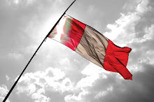 Banderas a media asta en señal de duelo, solidaridad y ciudadanía activa ¡SUMATE!
