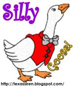 Silly Goose Award