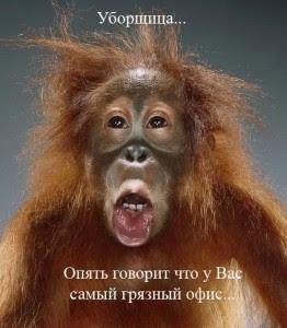 Смях в картинки - Page 10 Maimuna11-262x300