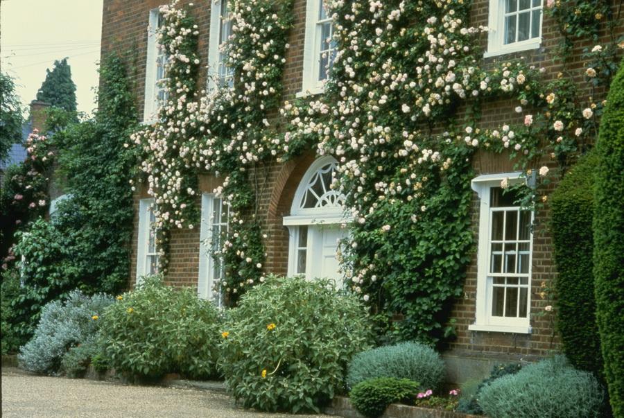 Corel Photo English Country Gardens