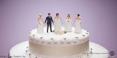 торта - Сватбената торта Funny+wedding+cakes+29