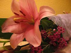 """""""L'amor és una bellíssima flor,però cal tenir el coratge d'anar a recollir-la a la vora d'un"""
