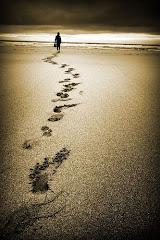 """""""Tot viatge, per llarg que sigui, comença per un sol pas""""."""