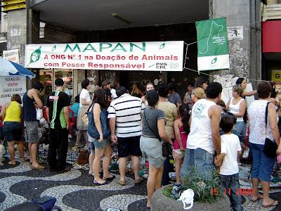 Feirinha de doação de animais - MAPAN
