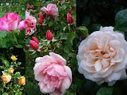Fleurs de printemps Anneliesa boucles oreille boucles oreilles fleurs de printe sdc ca big