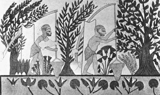occupation and trade of mesopotamian civilization The size of the site is testimony to the scale of the achievement of mesopotamia, the world's first civilisation inside its silted gates.