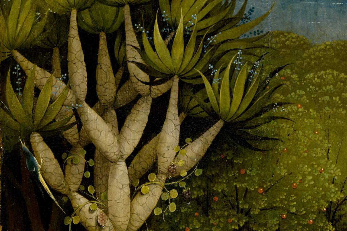Esos raros jardines el jard n de las delicias es muy raro for El jardin de las delicias detalles