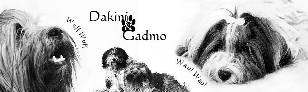 Dakini & Gadmo