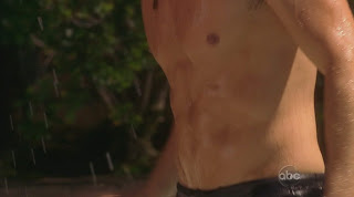 Gilles Marini Shirtless on Brothers and Sisters s4e05