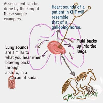 respiratory case study quizlet