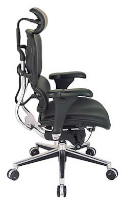 Eurotech Seating Ergonomic Office Chair by the Raynor Group