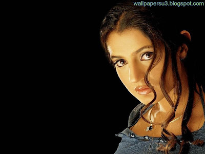 Amisha Patel Standard Resolution Wallpaper 01