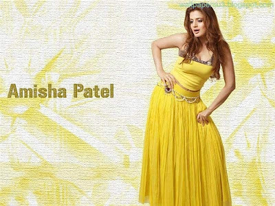 Amisha Patel Standard Resolution Wallpaper 10