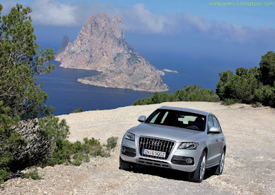 Audi Q5 wallpaper 7